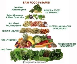 Raw Food Pyramid by katheryn