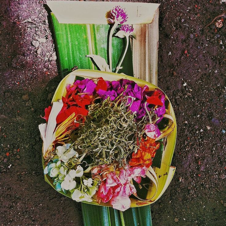 If you have ever been to #Bali you know what these are. They are called canang sari and are daily offerings to the gods