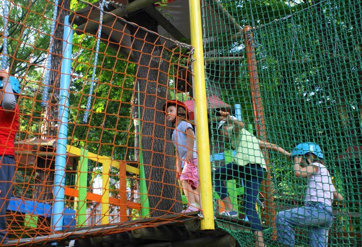 pętle asekuracyjne w parku linowym - Szukaj w Google