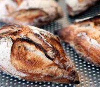 vita bröd/frallor | Recept.se