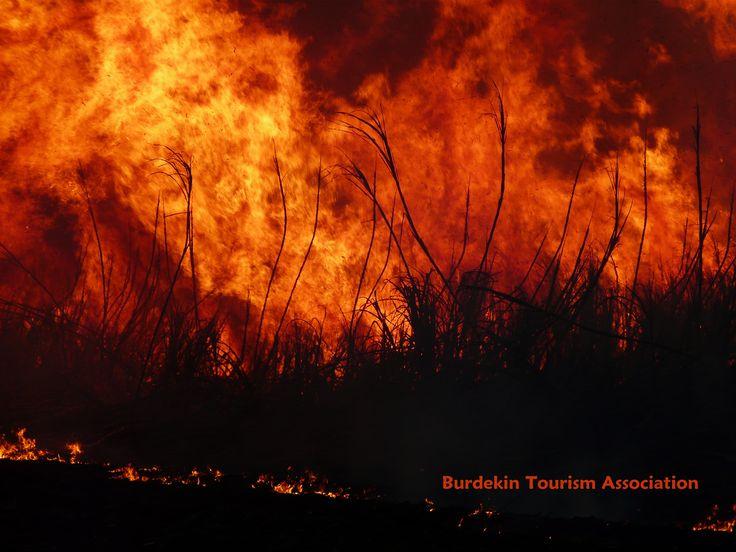 Cane fire, Burdekin Shire, North Queensland.