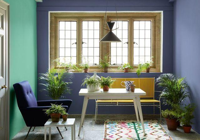 Nos idées pour créer un jardin d\'hiver même dans les ...