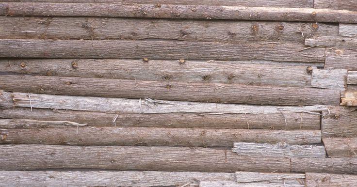 Cómo pelar la corteza de los árboles de cedro para la construcción de casas . El cedro es una de las maderas más deseables para la construcción -especialmente en las zonas donde la humedad es un problema. Es una madera durable, repelente de insectos y resistentes a la putrefacción que hace un acabado de madera hermoso y fragante para armarios y saunas. Por suerte, el cedro -o enebro- tiene una corteza suelta, con las ...