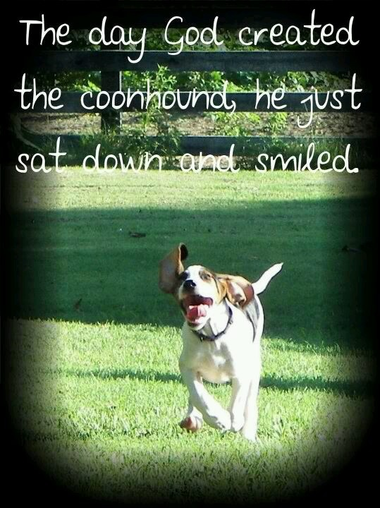 True. You gotta love coonhounds!