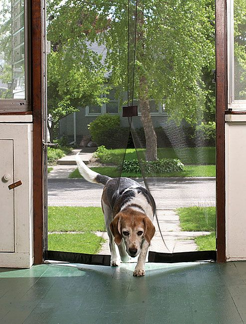 Just found this Instant Magnetic Screen Door - Instant Screen Door -- Orvis on Orvis.com!