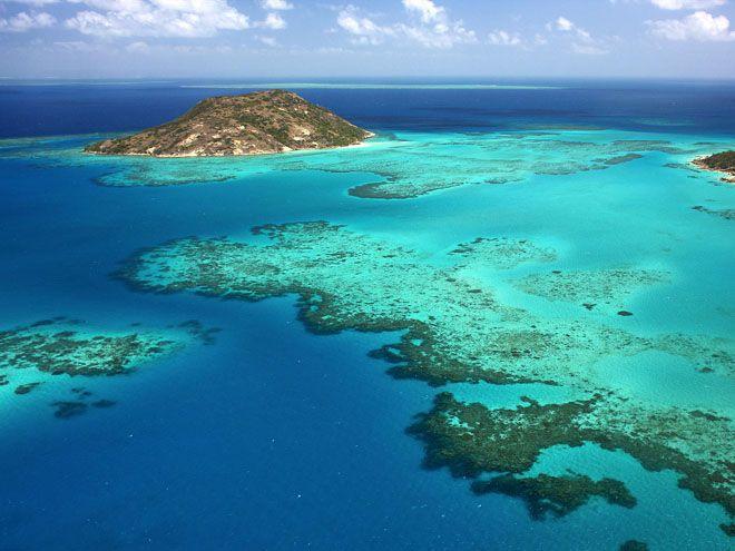 Здесь можно обрести максимум удовольствия от отдыха. Тут представлено широкое разнообразие флоры и фауны, качественные отели и великолепные пляжи, а также удивительная тропическая природа. Удивительным обнаруживается процесс наблюдения за отменными кораллами и разноцветными тропическими рыбами. Восхищение вызывают и причудливые формы этих рыб, проплывающих между красивыми разветвлениями коралловых структур. В водах вкруг рифа встречаются дельфины, китовые акулы, морские черепахи, осьминоги…