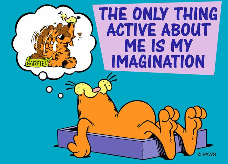 1/7/14 Garfield has the life we all dream about.