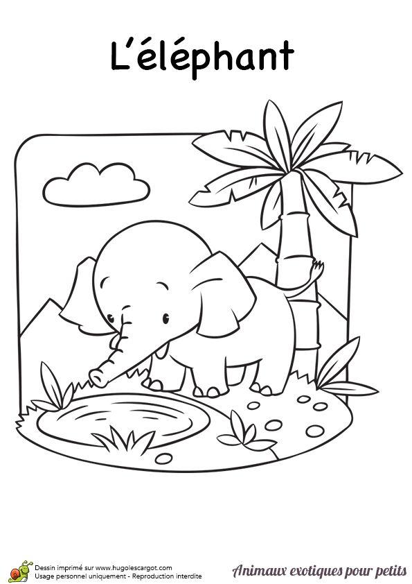 Un éléphant qui va boire de l'eau, coloriage pour enfant