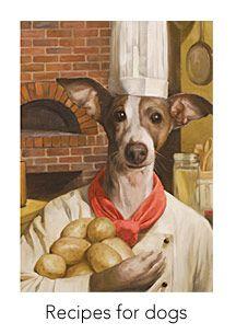 Best Dry Dog Food For Italian Greyhound Puppy