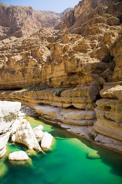 Emerald waters of Wadi Shab Oasis, Oman (by Andries3)