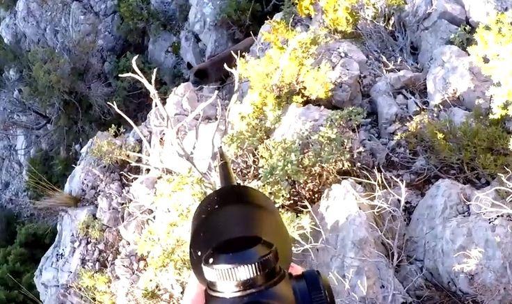 Une jolie vidéo de camera-video-chasse 3 Sangliers en Battue - Dans cette belle région des Bouches du Rhône nous attaquons un secteur pour chasser le sanglier. Ils sont au rendez vous à cause des récents dégats fait dans les habitations. Les rive...