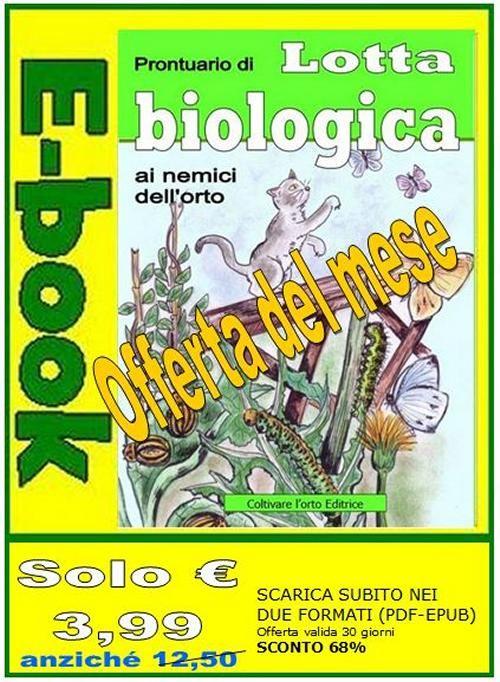 L'equiseto, rimedio biologico contro malattie fungine e parassiti