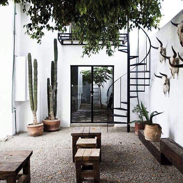 Weten jullie welke cactussen het gehele jaar geschikt zijn voor de tuin? En waar die te koop zijn? #tuin #garden #cactus #outdoor #outdoors #bolig #tradgard
