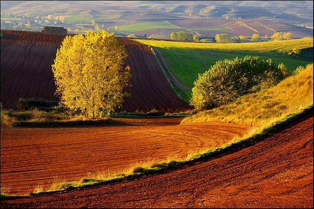 This is a picture of the countryside of La Rioja, Spain. It looks like a very peaceful place.