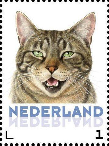 Stamp: Domestic Cat (Felis silvestris catus) (Netherlands - Personalized stamps) (Cats, Francine van Westering) Col:NL 2015-106