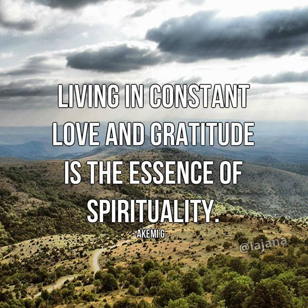 Living in constant love and gratitude is the essence of spirituality. - Akemi G