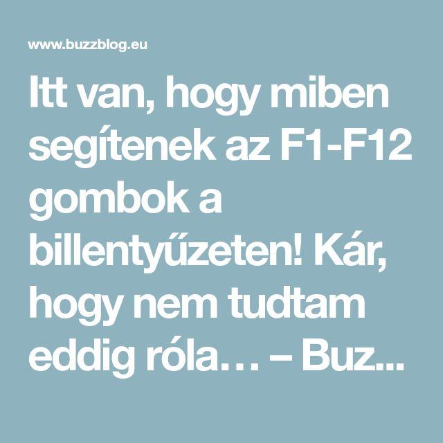 Itt van, hogy miben segítenek az F1-F12 gombok a billentyűzeten! Kár, hogy nem tudtam eddig róla… – BuzzBlog
