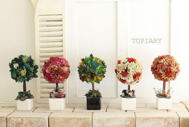 TOPIARY/トピアリー #オーストラリアプリザーブドフラワー #AustralianPreservedFlower #トピアリー#topiary #フラワーアレンジ教室