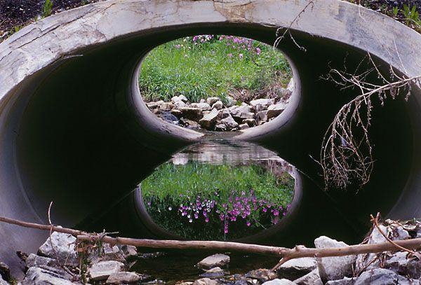 Concrete in nature.