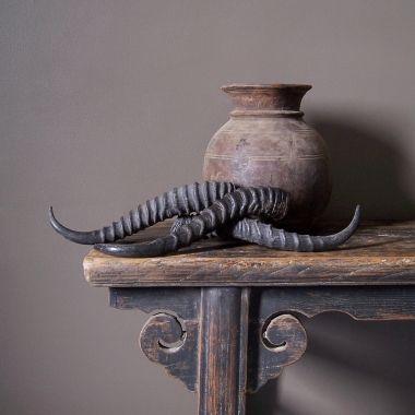Old Jug & Horns