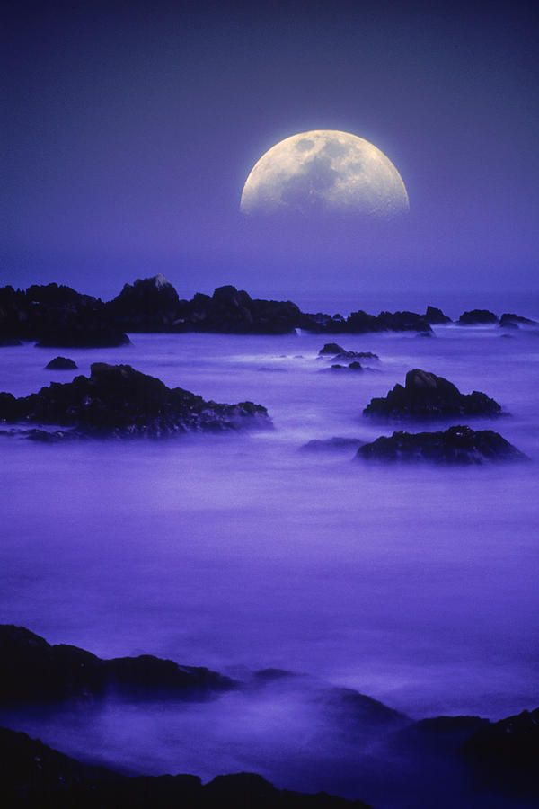 ~~Half Moon And Fog Over Pacific Ocean, Night ~ super moon violet beachscape by Christian Michaels~~