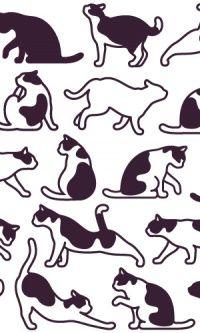 TG. #gatos #caricaturas