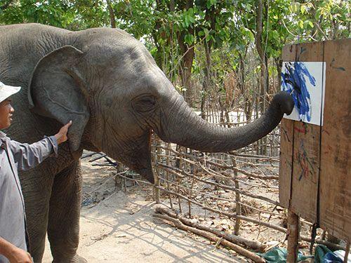 Phnom Tamao Wildlife Sanctuary