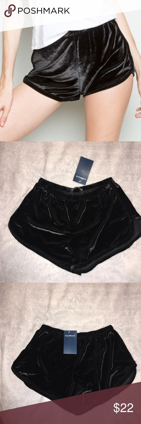 24 HR FLASH SALE Brandy Melville Velvet Lisette BNWT • Fits XS-M Perfect Condition  Price is Firm ❣️ Brandy Melville Shorts