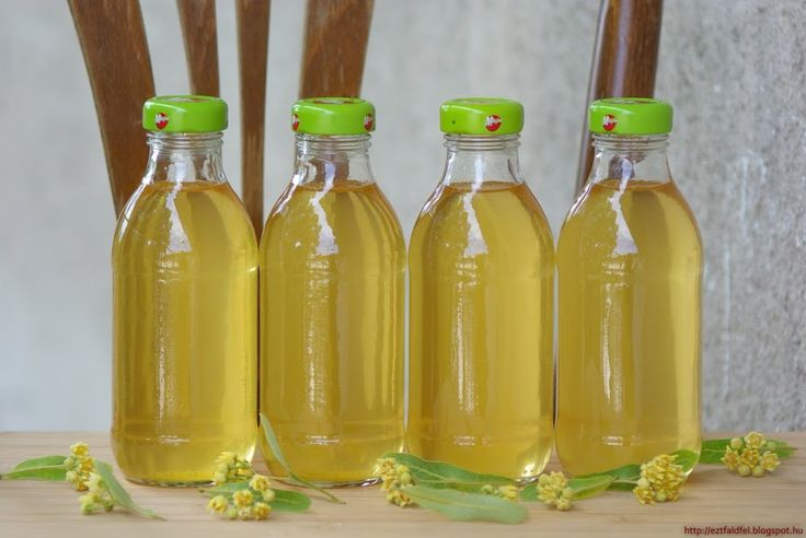 Ezt fald fel!: Hársfavirágszörp készítése - a palackba zárt hársfa illat