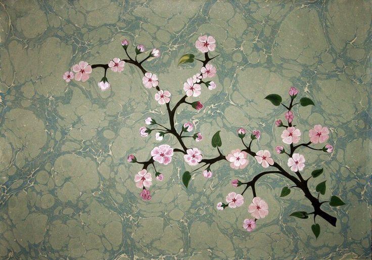 Kiraz Çiçeği - cherryblossom by Firdevs Çalkanoğlu