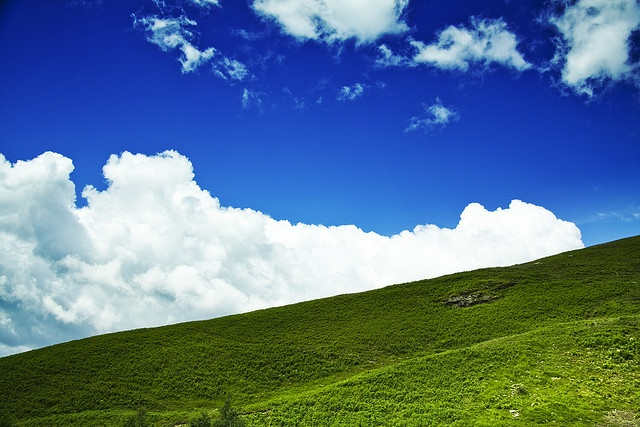 Look at this picture. Don't you think a child could have drawn it? #green #mountain #landscape. #Oasi #Zegna, #Italy