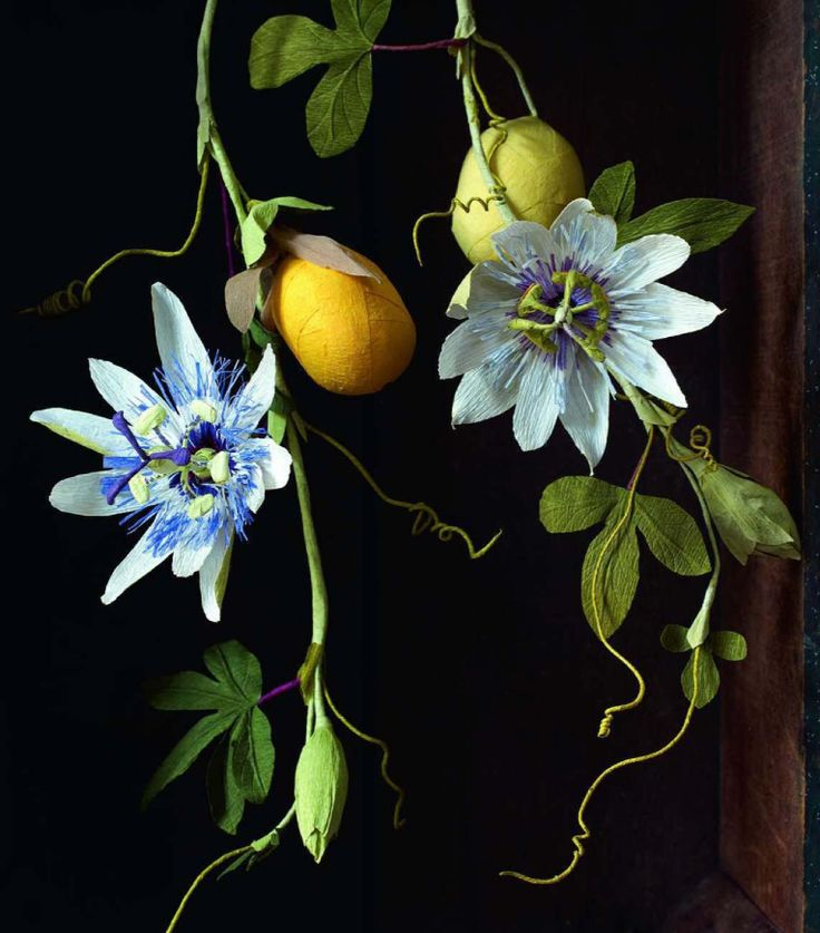 """Crepe paper botanicals by Anandamayi Arnold. """"Surprise balls"""" with treasures inside."""