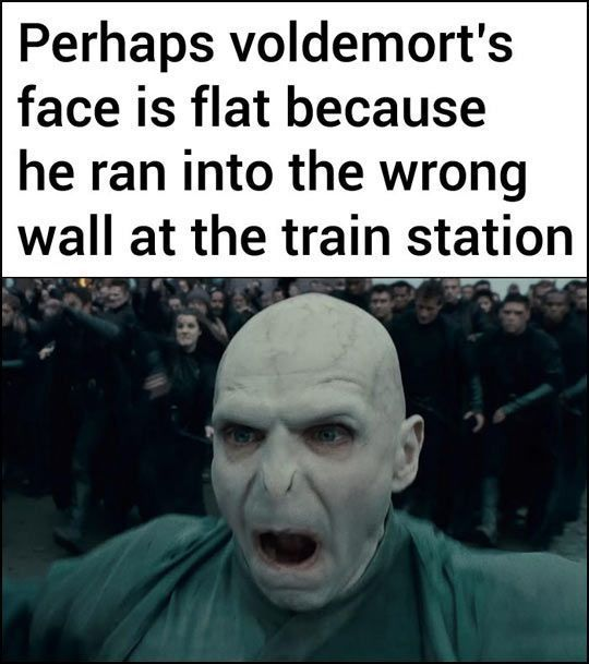 Perhaps Voldemort's face is flat because he ran into the wrong wall at the train station