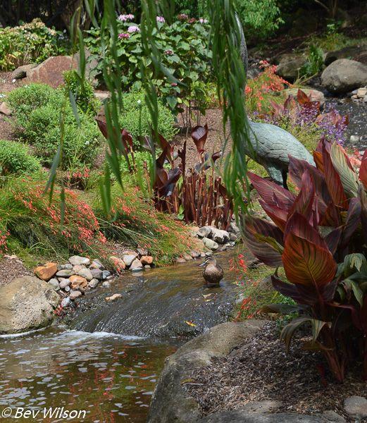 Hunter Valley Gardens, Nikon shot