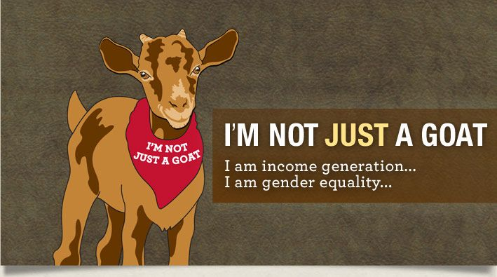 I'm not JUST a goat! I support gender equity, income generation....  www.notjustagoat.com