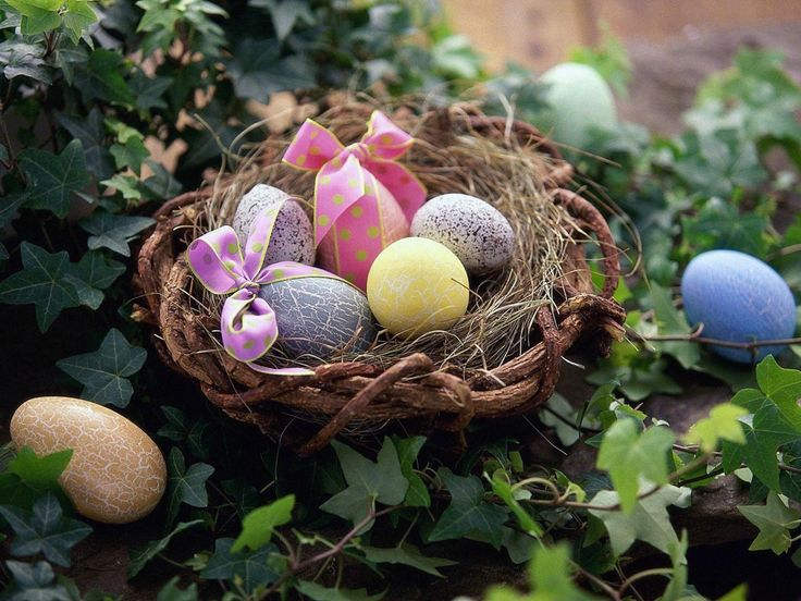 Holiday Easter  Egg Basket Vine Nest Bow (Clothing) Wallpaper
