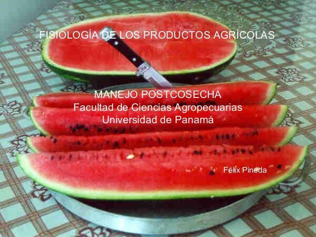 FISIOLOGÍA DE LOS PRODUCTOS AGRÍCOLAS  MANEJO POSTCOSECHA  Facultad de Ciencias Agropecuarias  Universidad de Panamá  Félix Pi...
