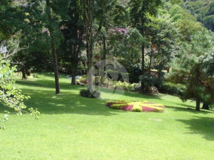 quintal jardim gloria : quintal jardim gloria: Jardim Inclinado no Pinterest