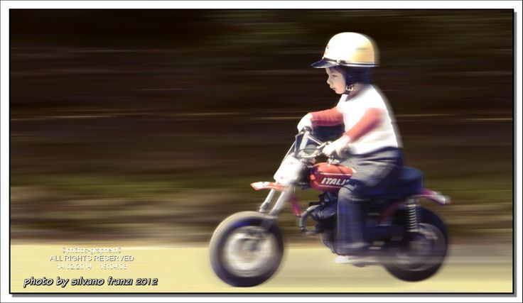 PANNING - My Images Do Not Belong To The Public Domain - All images are copyright by silvano franzi ©all rights reserved©