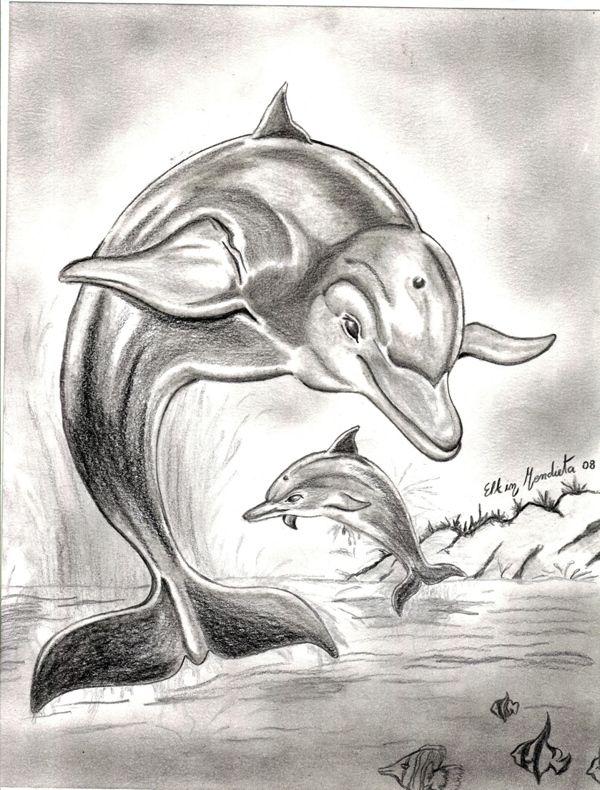 delfines dibujos a lapiz - Buscar con Google