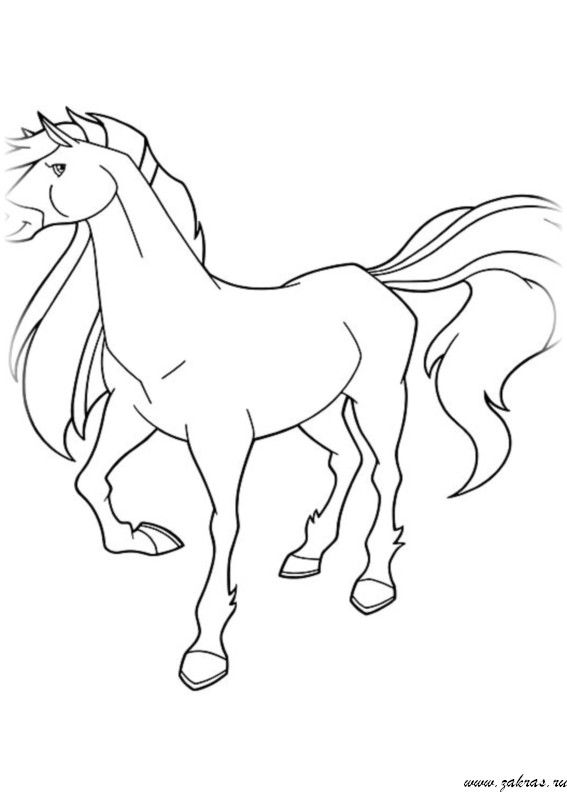28 best coloriage horseland images on pinterest adult coloring anniversary ideas and belle - Coloriage horseland ...