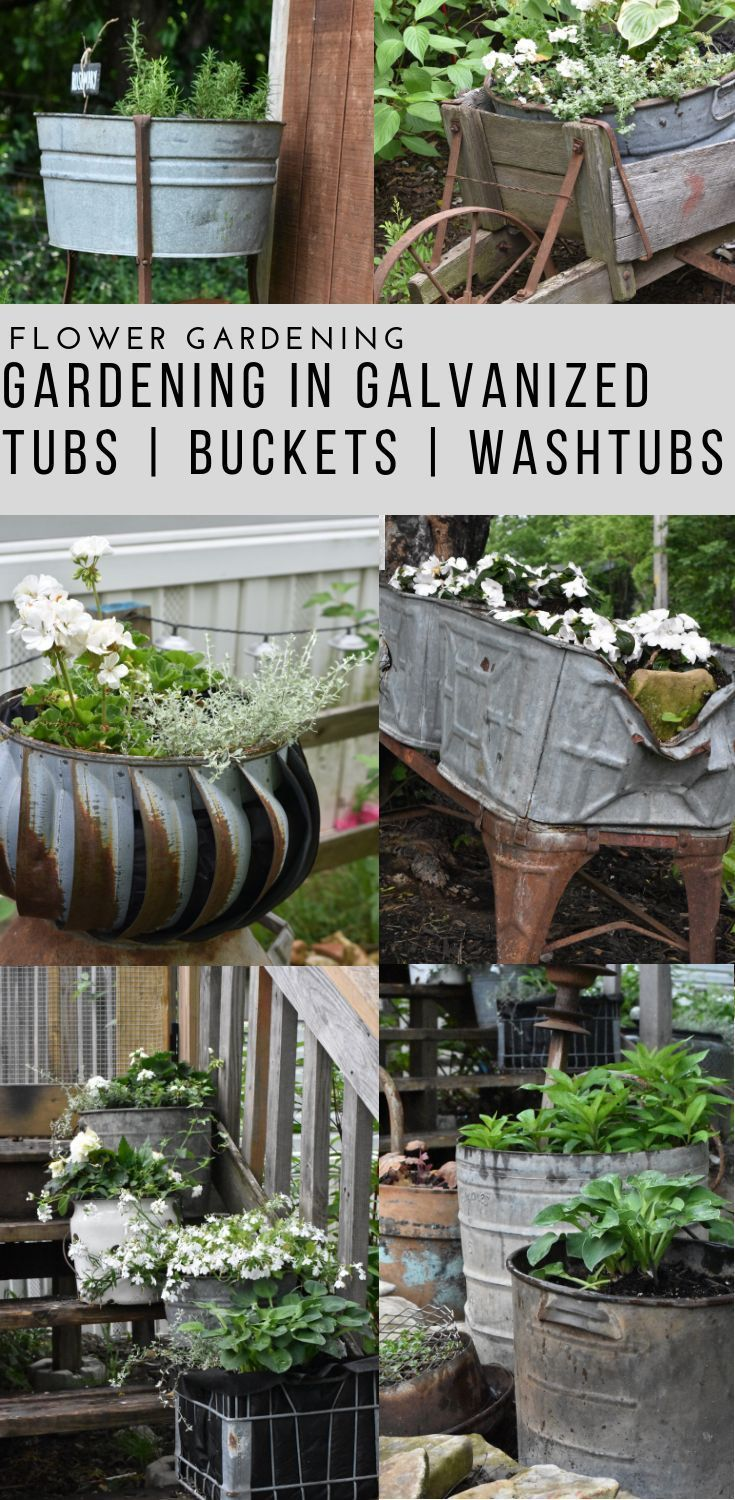 Vintage Galvanized Garden Tub Planters Rocky Hedge Farm Container Gardening Flowers Bucket Planters Rustic Gardens