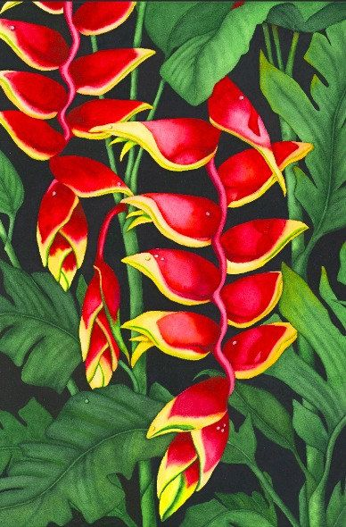 Watercolor painting...HEAVENLY HELICONIA...heliconia...giclee