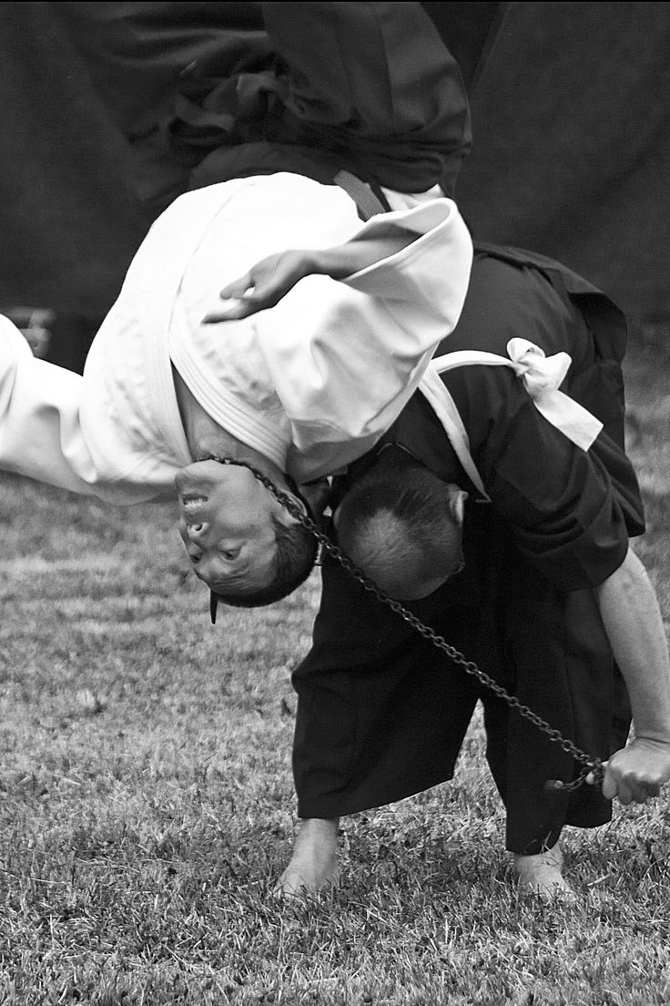 the characteristics of aikido a japanese martial art Characteristics of the single wing choke include: aikido aikido is a martial arts descended from we think the japanese martial arts center offers the best.