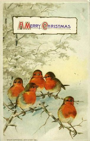 .Vintage Postcards, Holiday Postcards, Christmas Illustration, Christmas Postcards, Vintage Christmas Cards Birds, Christmas Vintage, Merry Christmas, Christmas Birds, Vintage Cards