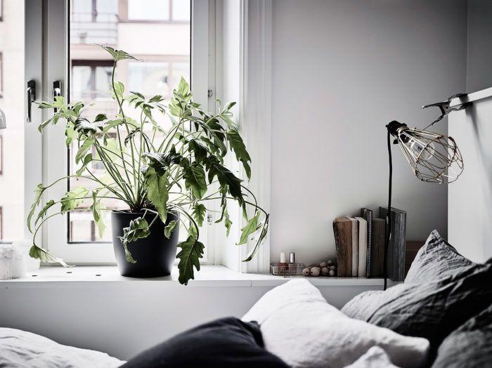 Inred sovrummet med 7 av vårens trender