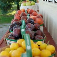 Jordan Village Farmers' Market - local fruit and veggies, baked goods, dairy and gluten free items, flowers & jams!