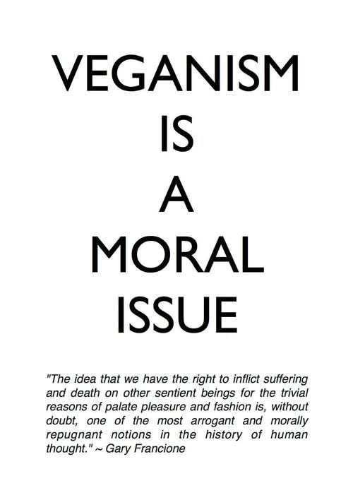Veganism Is A Moral Issue I love this pin! Come and check out some vegan recipes at-> yummspiration.com