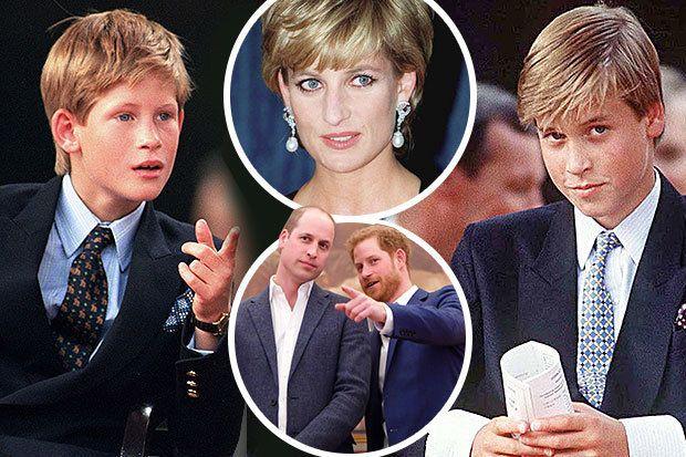 Princess Dianas dilemma over Harry and William revealed