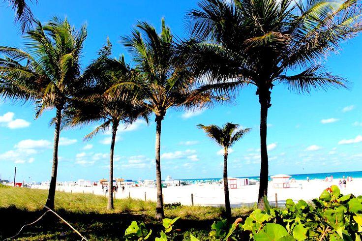 Fun Vacay – Miami Beach, Insider Guide | OurCoterie